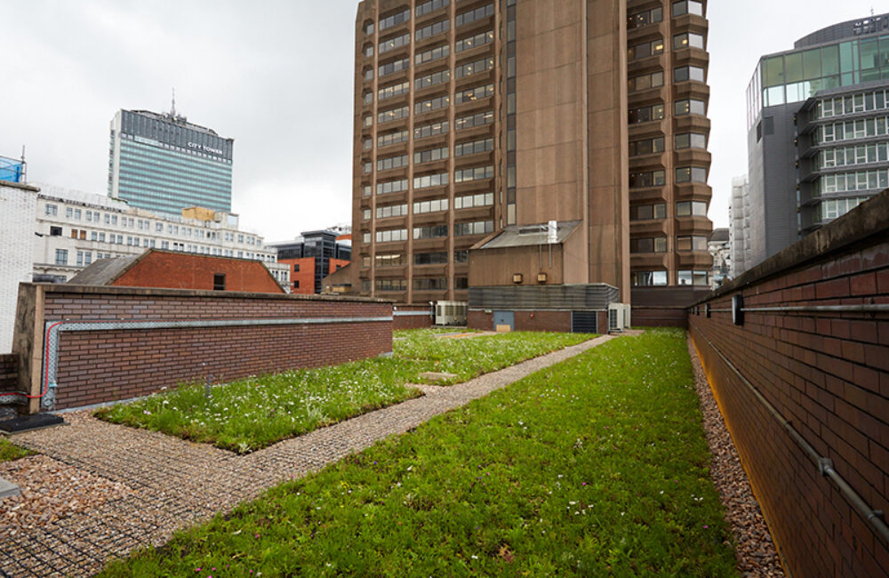 polypipe green roof